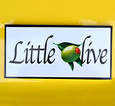 Little Olive Dura-Wood Sign