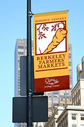 Custom Street Pole Banner Sign