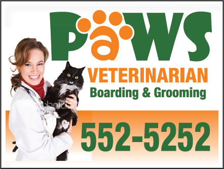 Paws Veterinarian Custom Sign