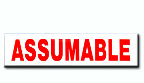 Assumable Insert - 6